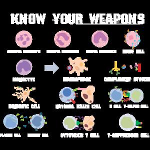 Biologe Zellen Enzyme