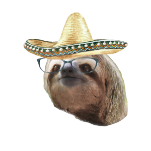 Sloth Black Glasses Sombrero Sloths In Clothes