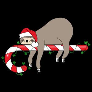 Faultier Zuckerstange Weihnachten