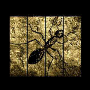 Ameise Ameisenbaer Krabbeln Tiere Bestseller