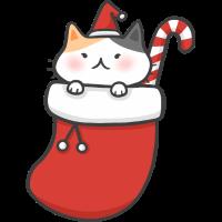 Süße Weihnachten Socken Katze