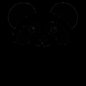 Bear with me Panda