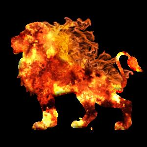 Feuer Löwe - Flammen, brennend, König