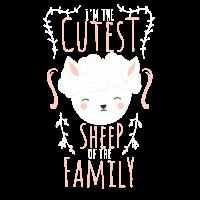 das süßeste Schaf der Familie. Schäfchen