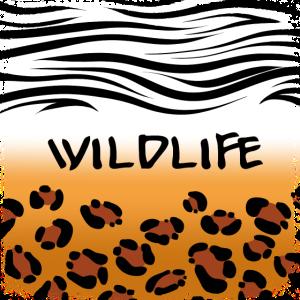 Wildlife - Zebra / Leoparden Hintergrund