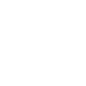 Delete my Browser History weiss