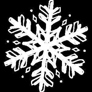 Schneeflocke Schneestern Eiskristall Winter