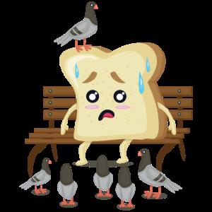 Toast Toastbrot Tauben Parkbank