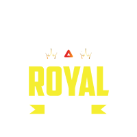 Angry Battle Royal Gamer