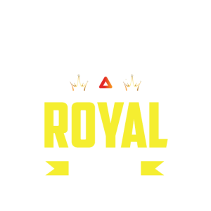 Angry Battle Royal Gamer