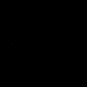 Dinosaur Dinosaurier in schwarz
