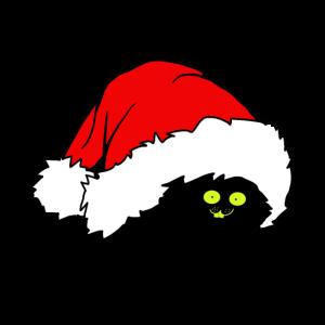 Rote Weihnachtsmütze mit weißem Bommel Tshirt