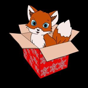Süßer roter Fuchs im Karton Geschenkidee Tshirt