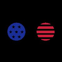 Amerikanische runde Sonnenbrille 1511
