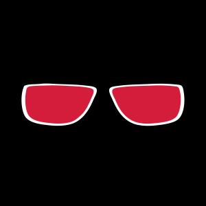 Sonnenbrillen 15119