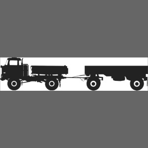 IFA LKW W50 LA 3 SK mit HW80
