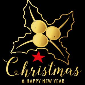 Frohe Weihnachten unterm Mistelzweig Geschenkidee