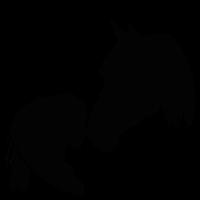 Horse Love