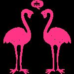flamingos2_vdh