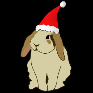 Hase Kanienchen Muetze Geschenk Weihnachten