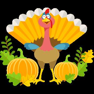 Thanksgiving comic