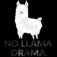 No Llama Drama Lama Alpaka Kinder Geschenk