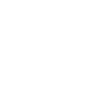 Schimpanse - Chimp - Chimpanzee