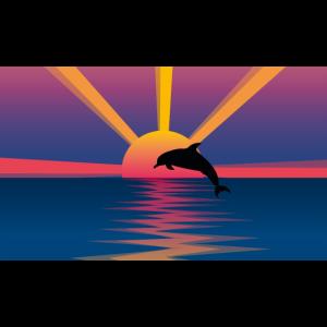 springender Delfin vor buntem Sonnenuntergang
