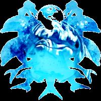 gxp Delfin Spritzer Wasserfarbe