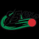 95ers_logo_neu