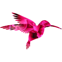 Kolibri Pink - Bunter Vogel, Geschenkidee