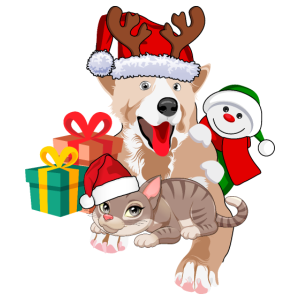 Christmas dog and cat gift idea gift ugly sweater