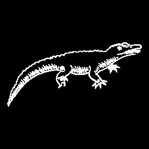 Krokodil handgezeichnet