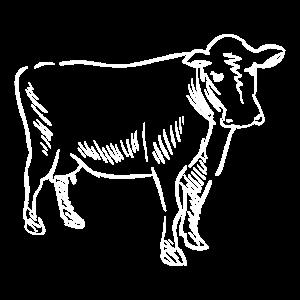 Kuh handgezeichnet