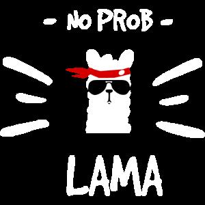 No Problama