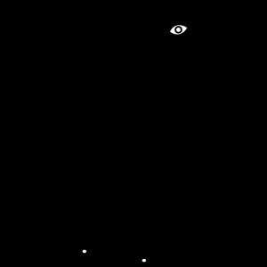 Lama schwarz