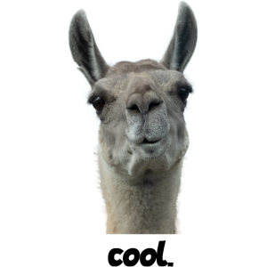 Lama cool