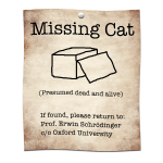 Schrodingers Missing Cat