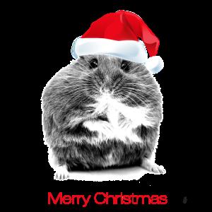 Süßer Hamster mit Weihnachtsmütze