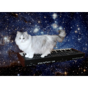 Cat on synthesizer in space p08