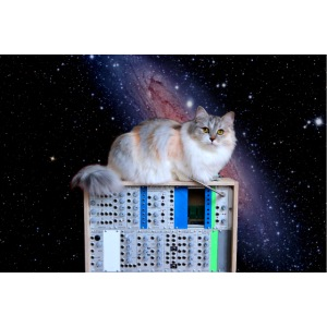 Cat on synthesizer in space EuroPaw