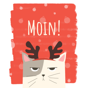 Moin Katze   Weihnachten   Winterkatze