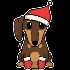 Süßes Tier Baby Hunde Welpe Dackel