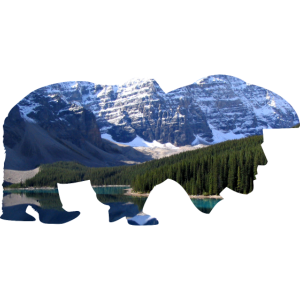 Bär mit Menschenkopf Rocky Mountains Geschenk Idee
