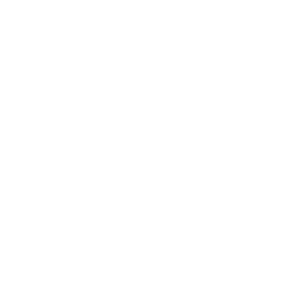 moneyrain