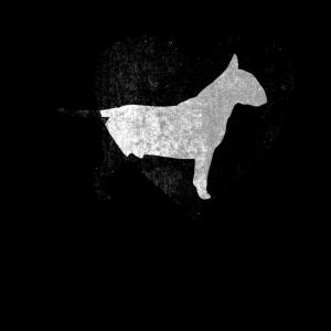 Bullterrier Hund