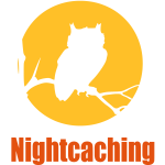 nightcaching owl 2