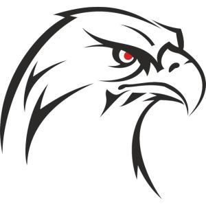 Adler shirt Geschenk Geschenidee