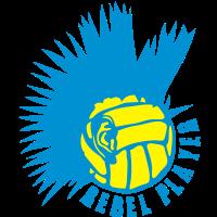 Volleyball Wasserball punk Ohr-Logo