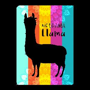 no drama llama - llama with no drama